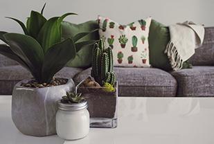 Home interior designers in Bangalore - Interior Trends of Summer 2020